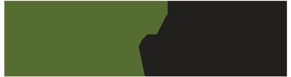 GRN Vision Logo